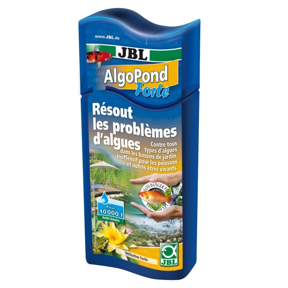 anti algue bassin