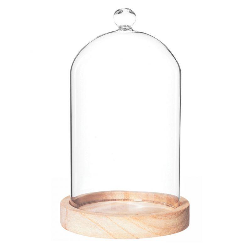 cloche en verre socle bois
