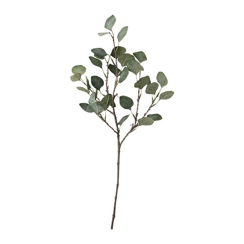 eucalyptus artificiel