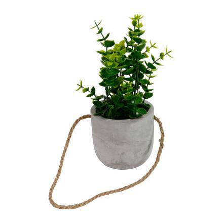 pot a plante