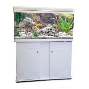 aquarium 100 cm