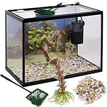 aquarium avec pompe