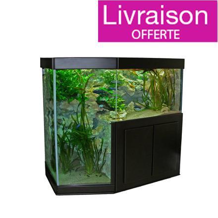aquarium et meuble
