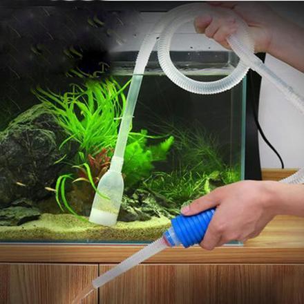 changement d eau aquarium