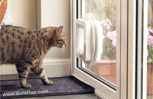 chatière dans vitre