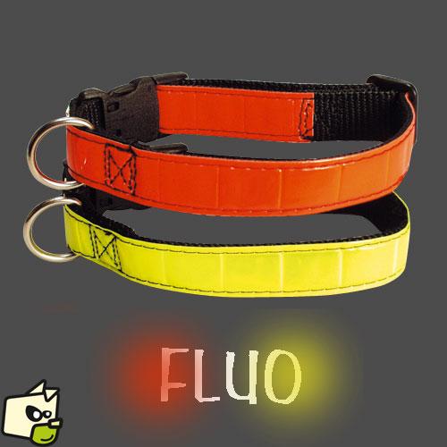 collier chien fluo