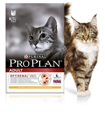 croquette proplan chat