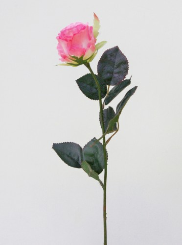fausse rose