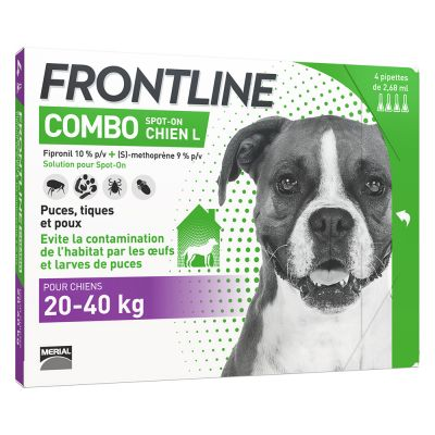 frontline chiot