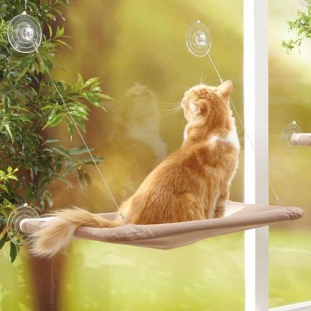hamac pour chat fenetre