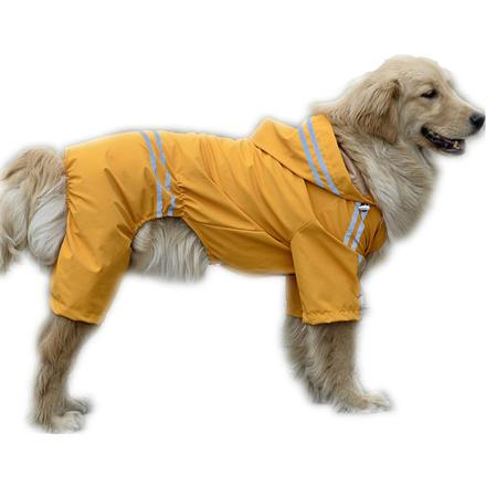 impermeable chien