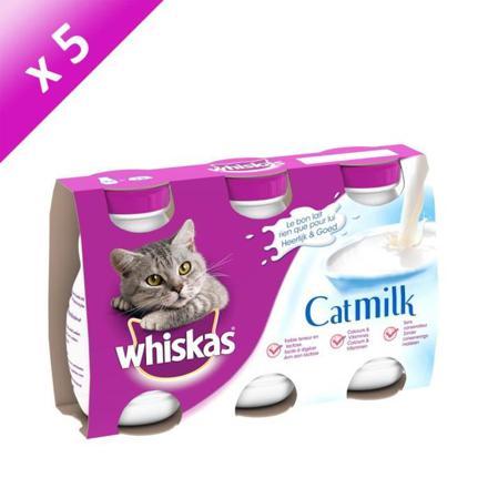 lait chat