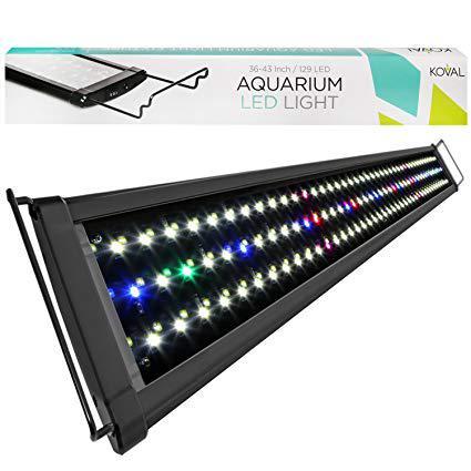 led aquarium