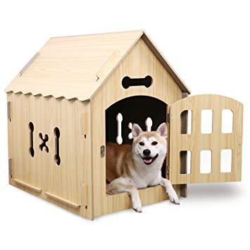 maison pour chien interieur