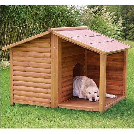 niche exterieur chien