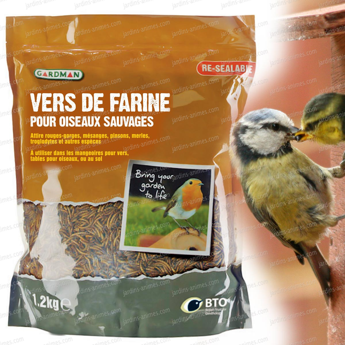 nourriture oiseaux sauvages