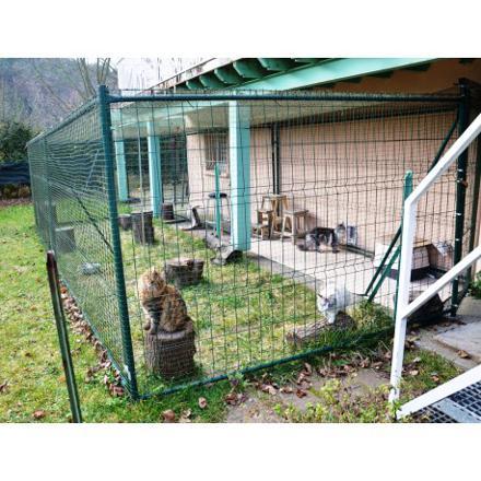 parc pour chat