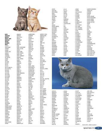prenom de chat en n