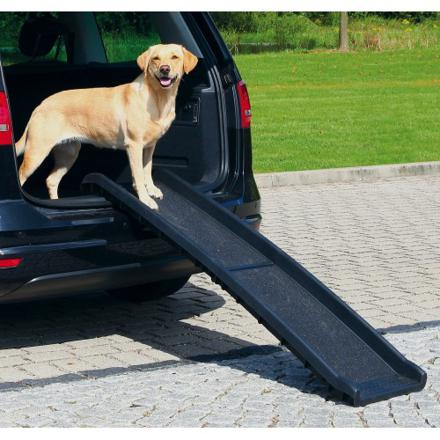 rampe voiture chien