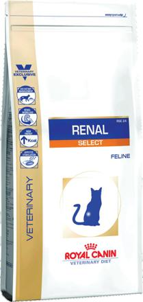 royal canin chat renal