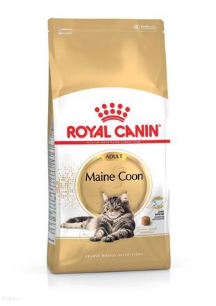 royal canin main coon