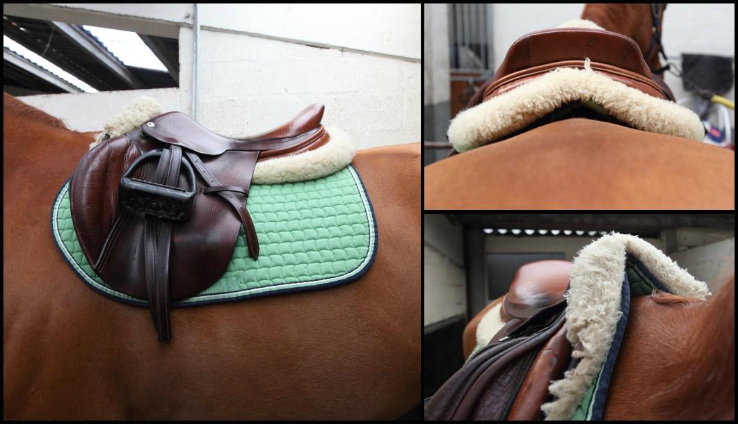 amortisseur selle cheval