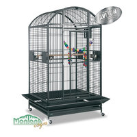 cage perroquet montana
