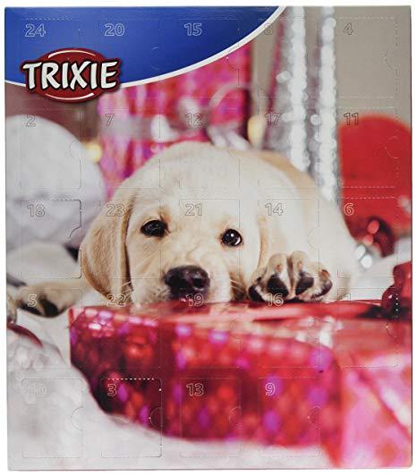 calendrier pour chien