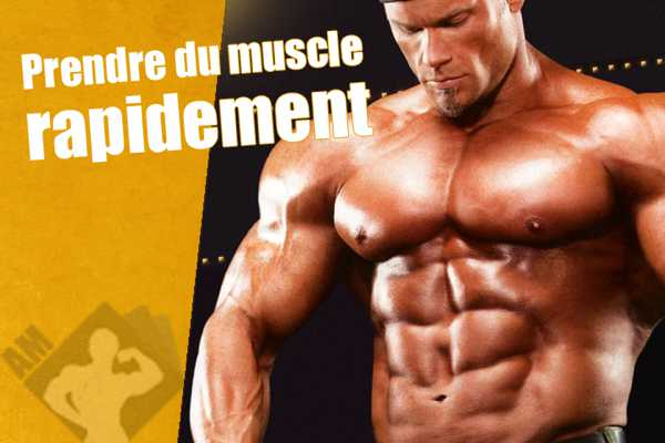 comment prendre du muscle
