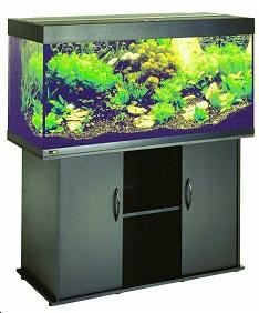 destockage aquarium