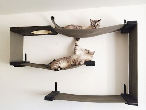 etagere chat