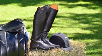 materiel equitation occasion