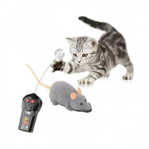 souris télécommandée pour chat