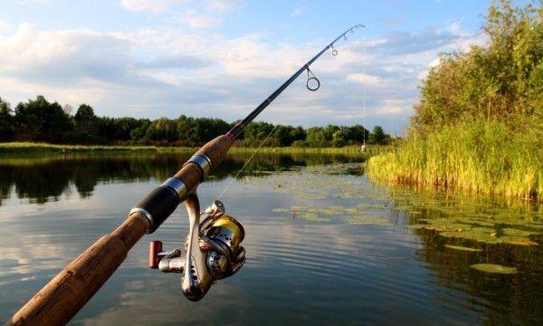 une canne à pêche